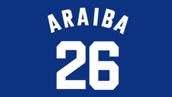 araiba01